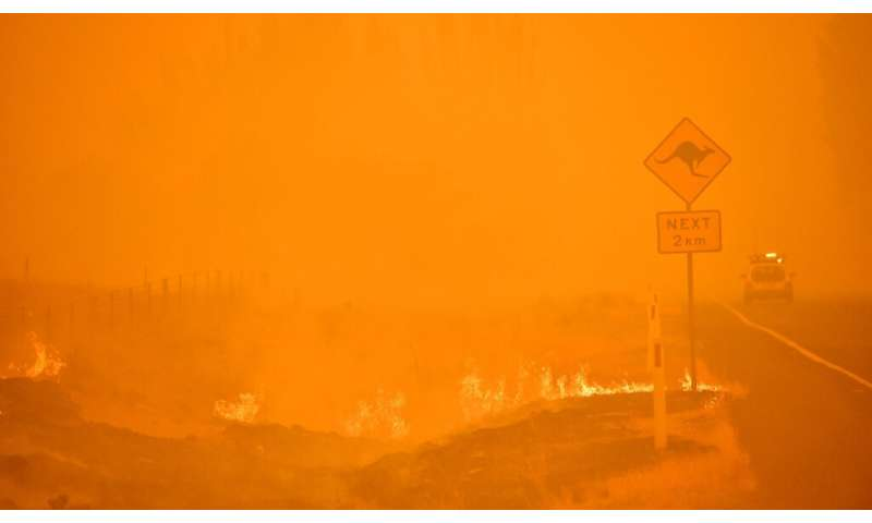 Australia has seen dozens of inquests into the causes of bushfires and steps that could be taken to mitigate them, with mixed re