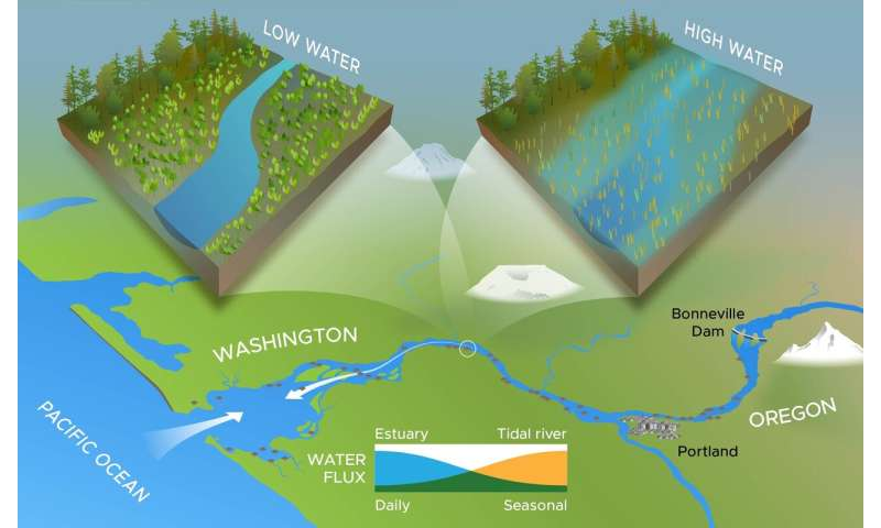 A watershed study for wetland restoration