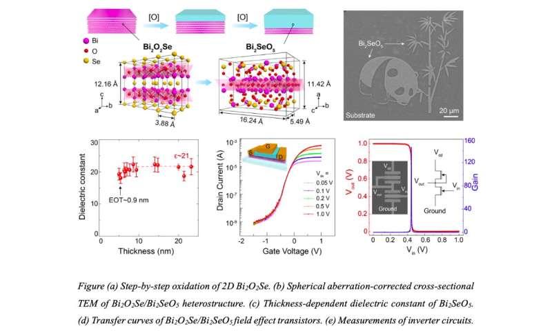 Bi2SeO5: Một chất điện môi cổng cao k ôxít tự nhiên mới để chế tạo thiết bị điện tử 2D