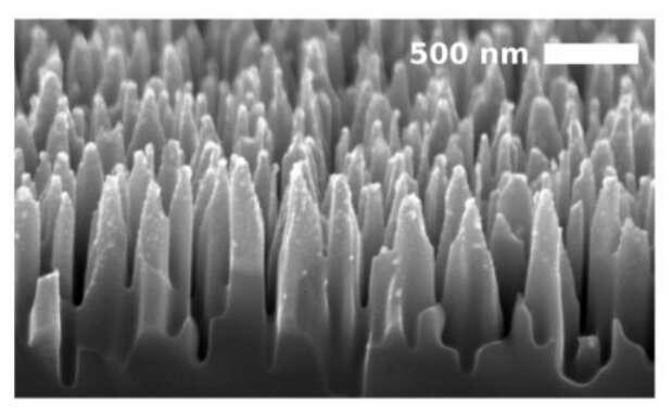 Black silicon UV responses exceed 130% efficiency