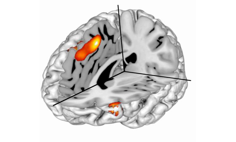 Calculated surprise leads to groundbreaking discovery in cognitive control research