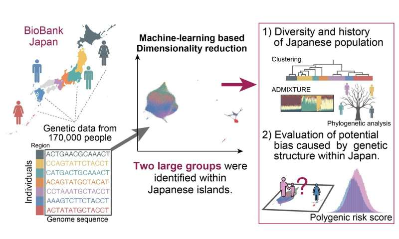 Celebrating our genomic diversity: Fine-scale differences in the Japanese population