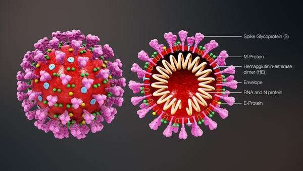 Coronavirus: BMJ study suggests 78% don't show symptoms – here's what that could mean