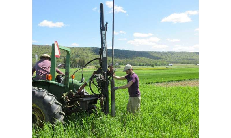 Cover crop roots are an essential key to understanding ecosystem services