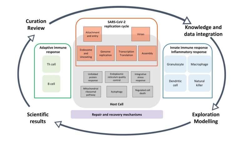 COVID-19 disease map: LCSB researchers coordinate international effort