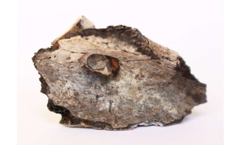 Cremation in the Middle-East dates as far back as 7,000 B.C.