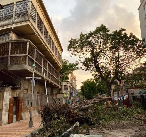 Cyclone Amphan reinforces urgent need for climate adaptation planning
