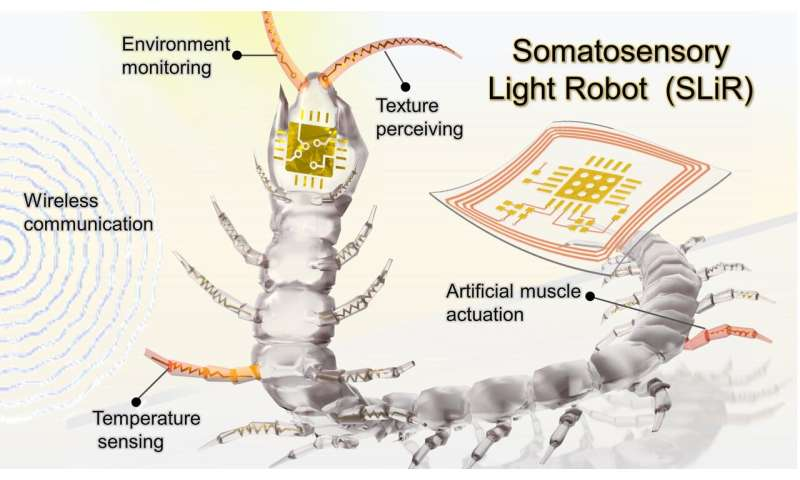 [Dialog] Light-driven thin-film robots could feel