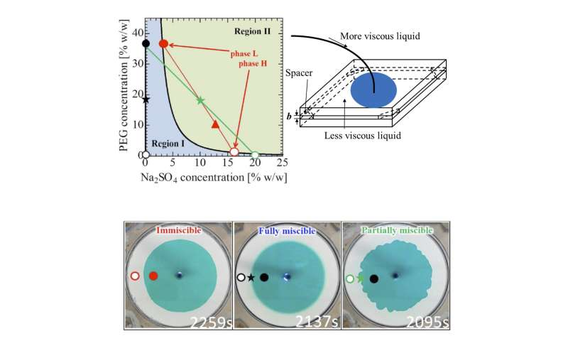 Discovery of a new liquid-liquid interfacial deformation by partial miscibility