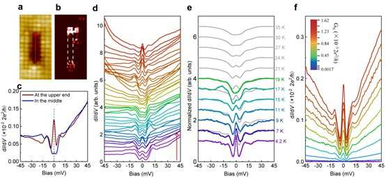 Discovery of zero-energy bound states at both ends of a one-dimensional atomic line defect