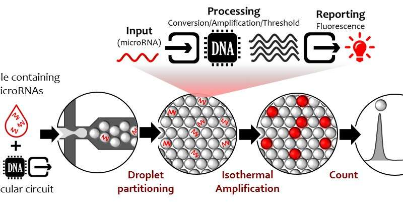 DNA nanotechnology to detect cancer biomarkers