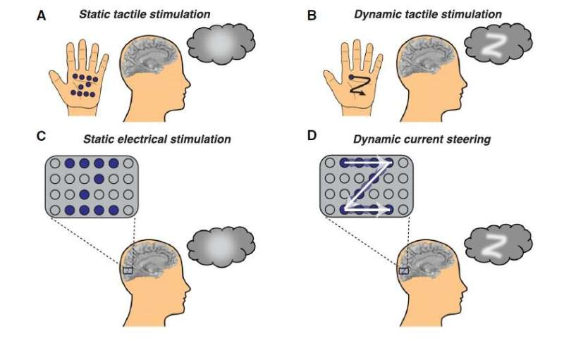 Dynamic stimulation of the visual cortex allows blind and sighted people to 'see' shapes