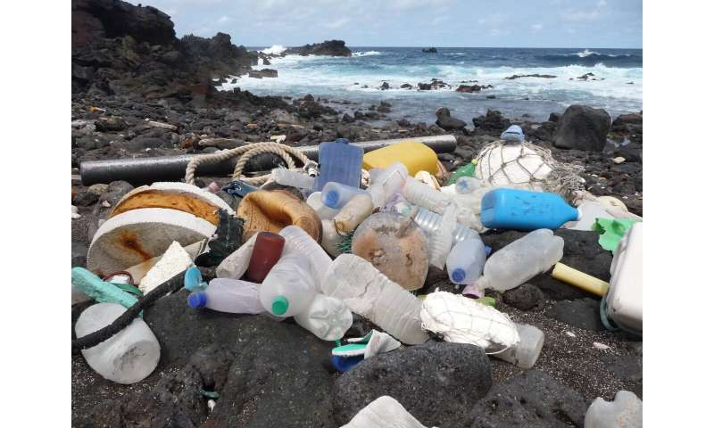Ecologists sound alarm on plastic pollution