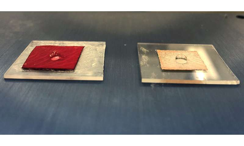 Engineers use heat-free technology to make metallic replicas of a rose's surface texture