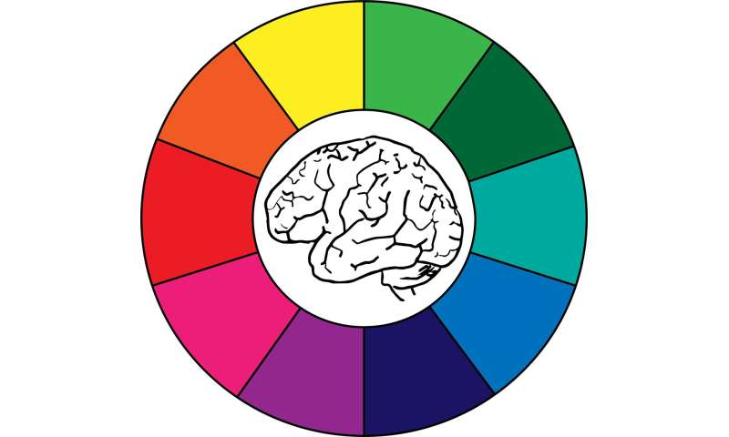 Envision color: Activity patterns in the brain are specific to the color you see