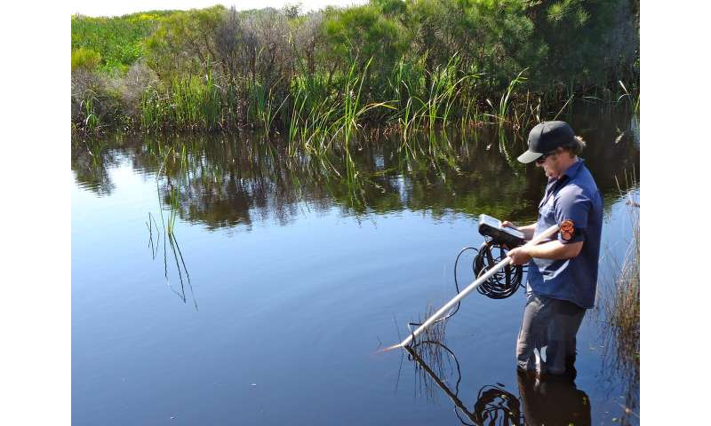 Estuaries are warming at twice the rate of oceans and atmosphere