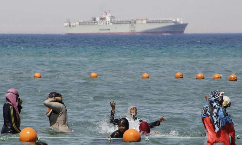 Experts say Med Sea altered by Suez Canal's invasive species