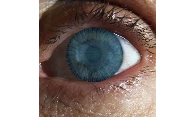 Eye pupil an indicator of effective decision making, study finds