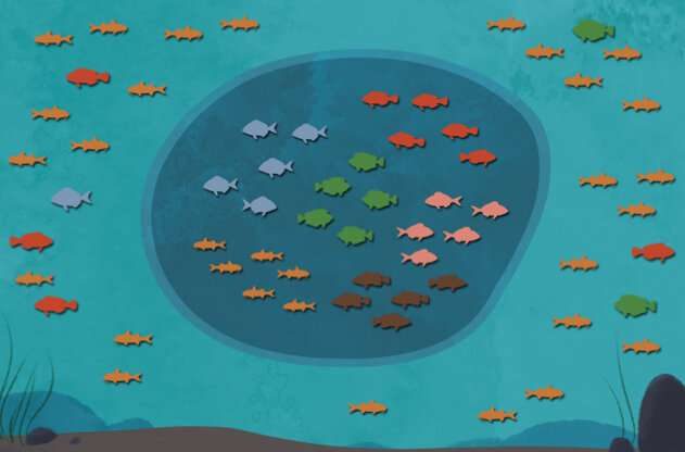 Fish species benefit from marine protection to varying extents