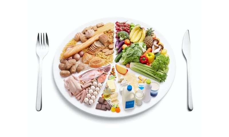 Food variety is important for health – but the definition of a 'balanced diet' is often murky