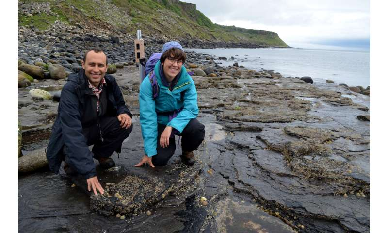 Fossil footprints show stegosaurs left their mark on Scottish isle