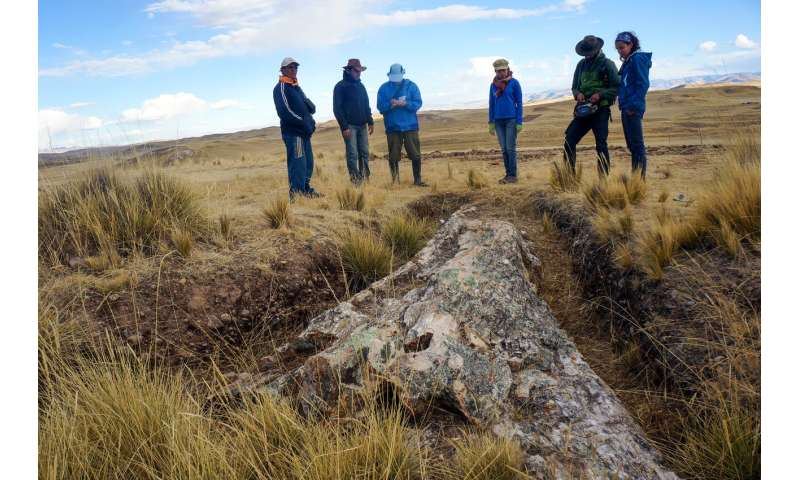 Fossil trees on Peru's Central Andean Plateau tell a tale of dramatic environmental change