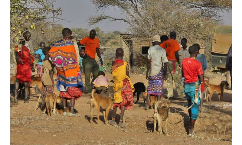 Grassroots dog vaccinations can help stop rabies, but not alone