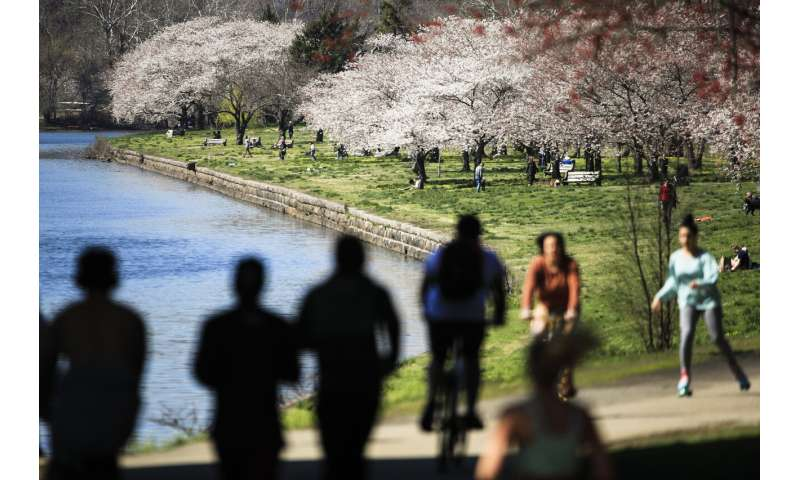 Hay fever or virus? For allergy sufferers, a season of worry
