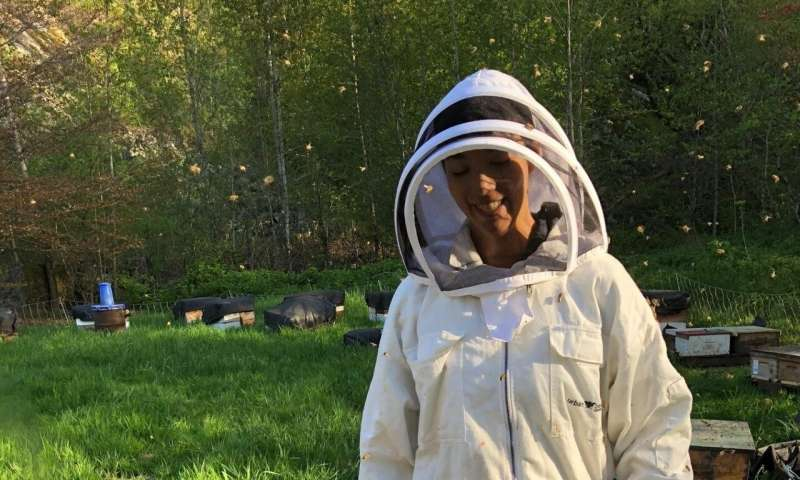 Honey bees could help monitor fertility loss in insects due to climate change