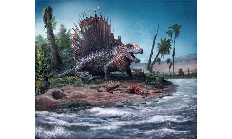 How and when spines changed in mammalian evolution