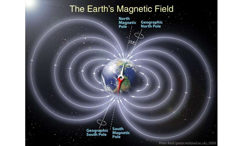 How animals sense Earth's magnetic field