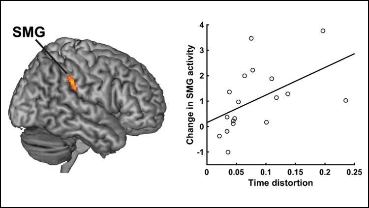 How the brain creates the experience of time