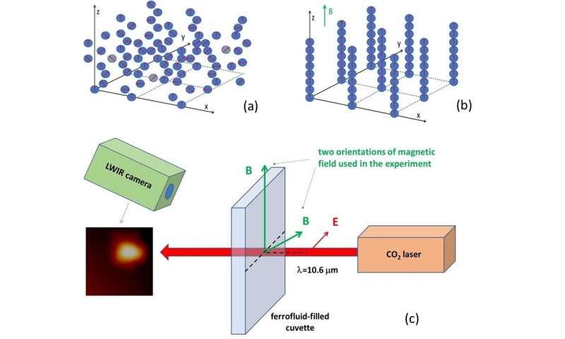 Hyperbolic metamaterials exhibit 2T physics
