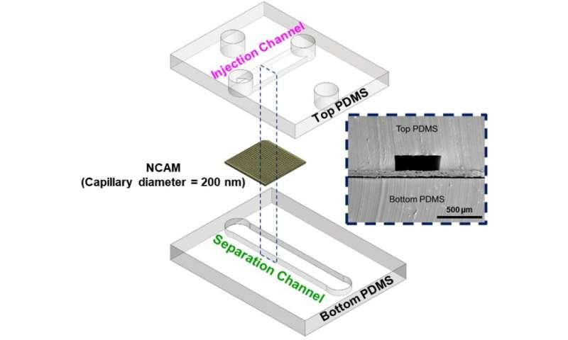 Improving cancer diagnostics through microfluidics