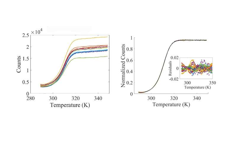 Making the DNA melt curve more accurate