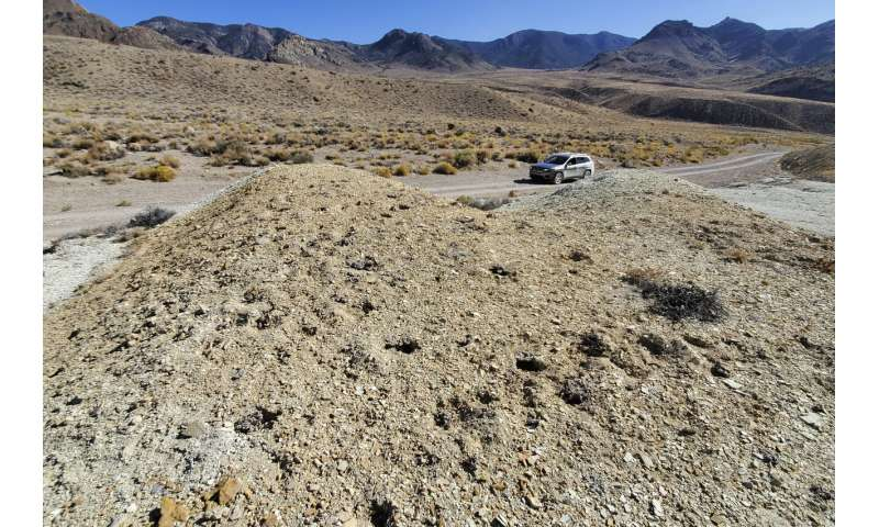Massive damage of rare plants probed at Nevada mine site