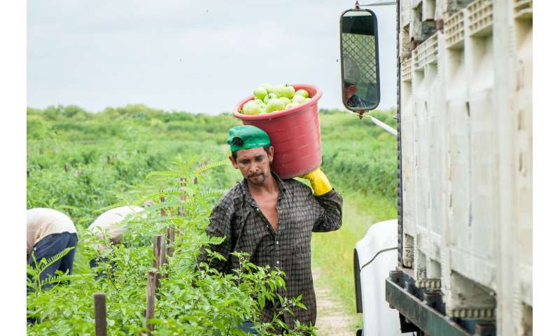 Migrant workers falling through cracks in health care coverage