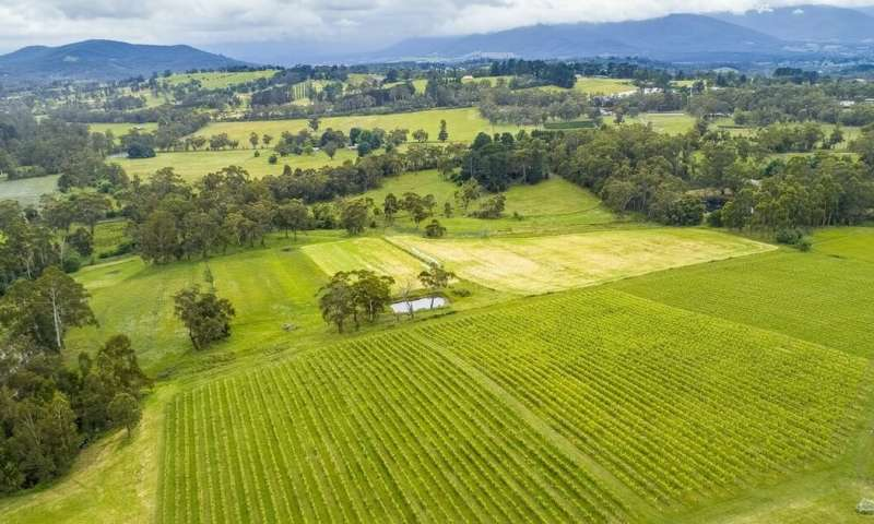 More than 1,200 tonnes of microplastics are dumped into Aussie farmland every year from wastewater sludge