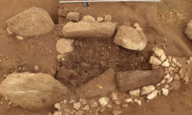 Neolithic genomes from modern-day Switzerland indicate parallel ancient societies