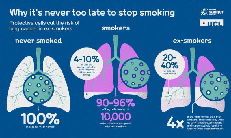 Never too late to quit -- protective cells could cut risk of lung cancer for ex-smokers