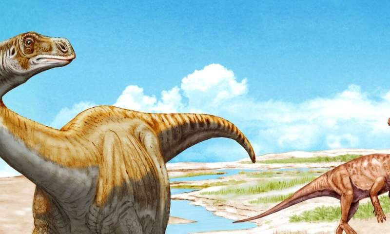 New dinosaur discovery in Switzerland fills a gap in evolutionary history of sauropods
