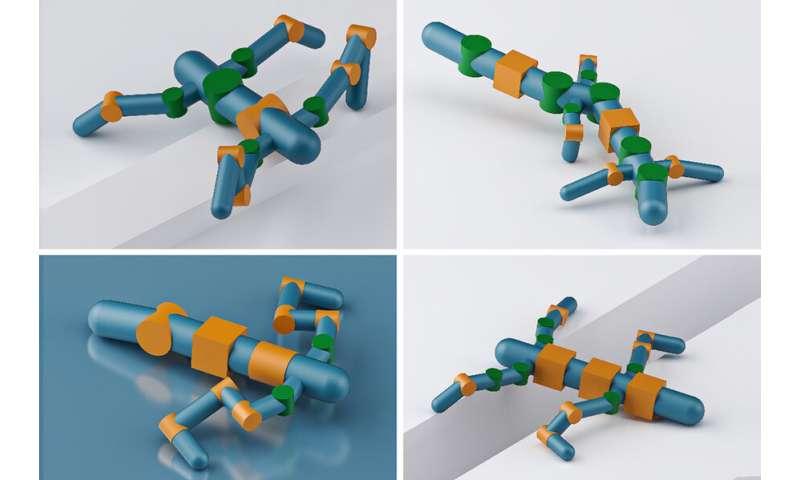 Sistem baru mengoptimalkan bentuk robot untuk melintasi berbagai jenis medan