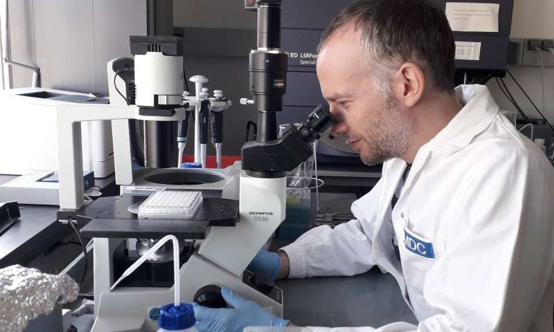 New therapeutic options for multiple sclerosis in sight