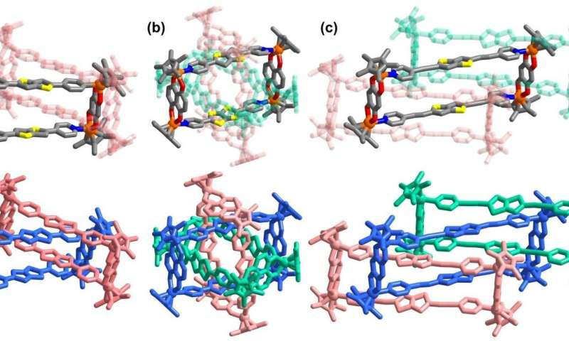 """All-in-one"" strategy for metalla[3]catenanes, borromean rings and ring-in-ring complex"