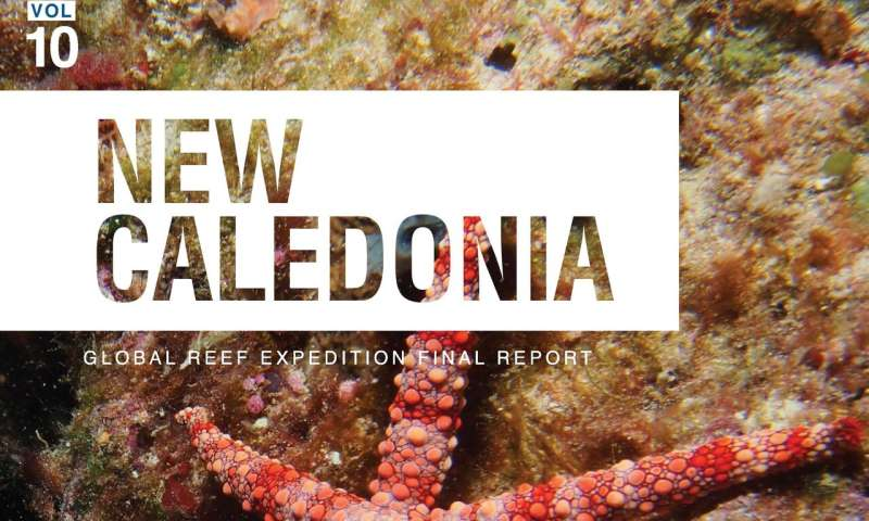 Report on New Caledonia's coral reefs offers a glimmer of hope for the future