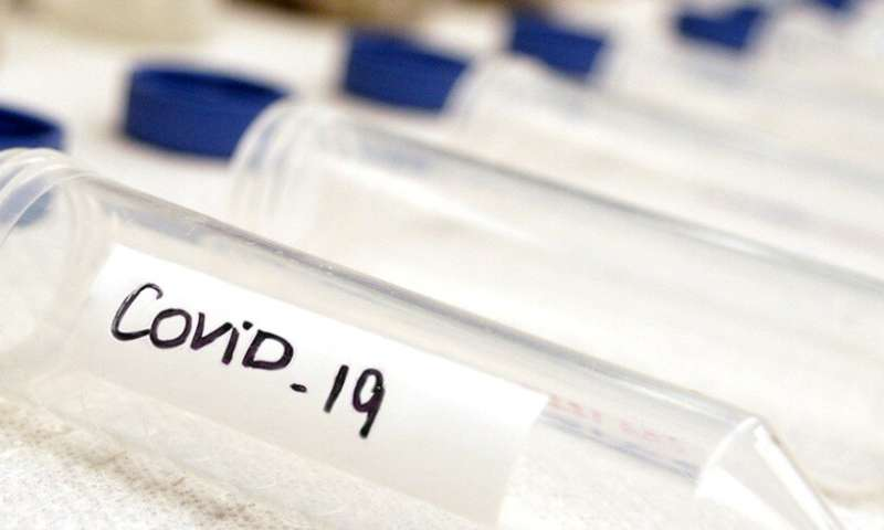 Research produces different results from key China COVID-19 study
