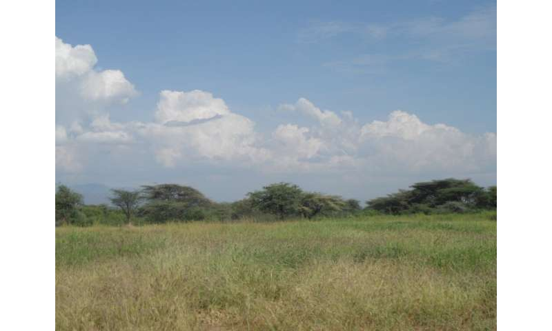 Restoration of degraded grasslands can benefit climate change mitigation and key ecosystem services