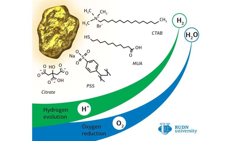 RUDN chemist synthesized gold-based electrocatalysts