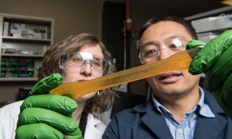 Scientists offer companies a novel chemistry for greener polyurethane