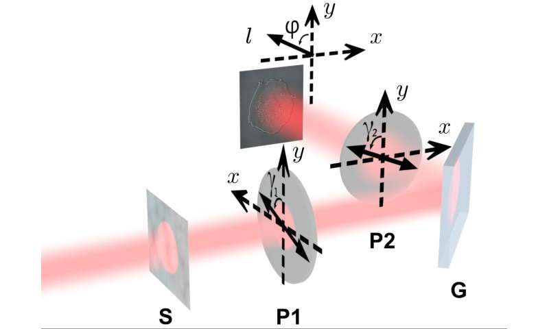 Seeing the Invisible: Polarizer Adjustments Increase Visibility of Transparent Objects